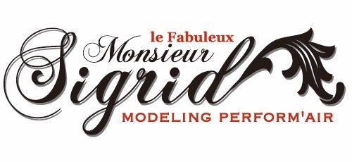 Logo Monsieur Sigrid